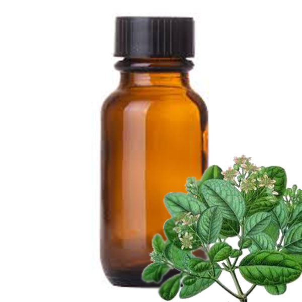 Andes Organics Pure Boldo Oil, 1000 ml