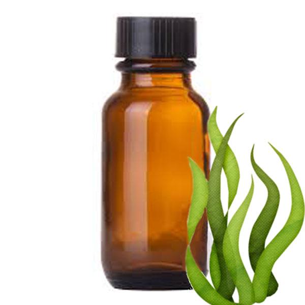 Andes Organics Pure Spirulina Oil, 1000 ml