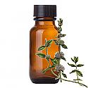 Andes Organics Pure Pennyroyal Oil, 1000 ml
