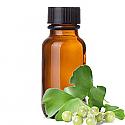 Andes Organics Pure Ginkgo Biloba Oil, 1000 ml