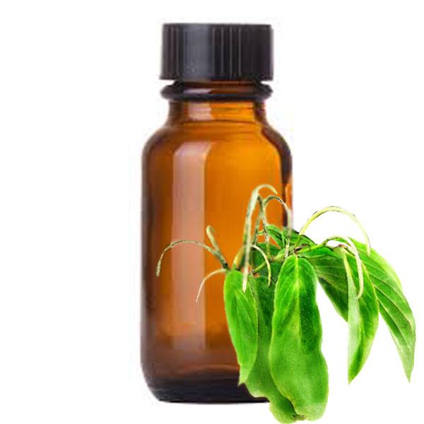 Andes Organics Pure Matico Oil, 1000 ml