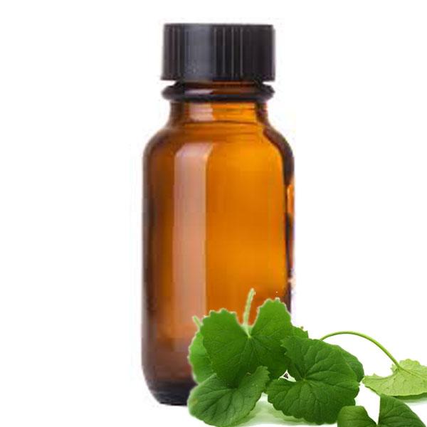Andes Organics Pure Centella Asiatica (Gotu Kola) Oil, 1000 ml