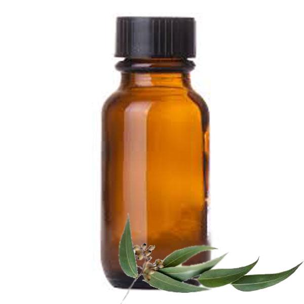 Andes Organics Pure Eucalyptus Oil, 1000 ml