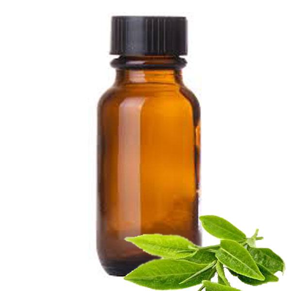 Andes Organics Pure Green Tea Oil, 1000 ml