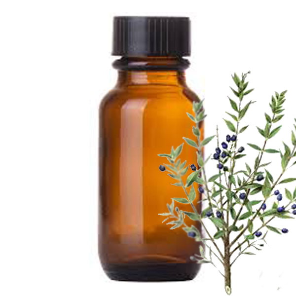 Andes Organics Pure Myrtus Oil, 1000 ml
